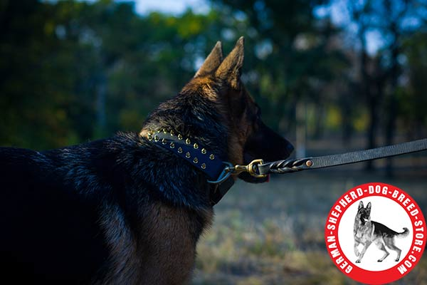 Reliable Handling Tool - Strong Leather German Shepherd Collar