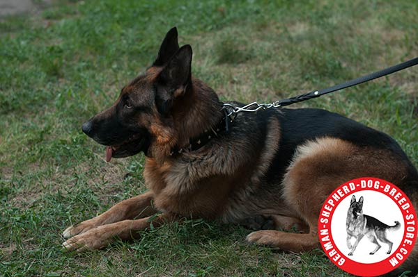 Attractive Leather German Shepherd Collar