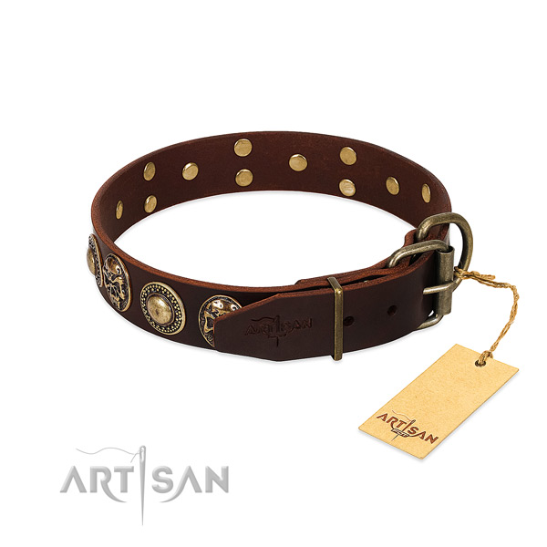 Everyday use leather collar with decorations for your canine