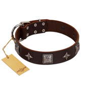 """Cold Star"" Designer FDT Artisan Brown Leather German Shepherd Collar with Silver-Like Adornments"