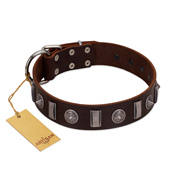 """Spiky Way"" FDT Artisan Brown Leather German Shepherd Collar with Silver-Like Decorations"