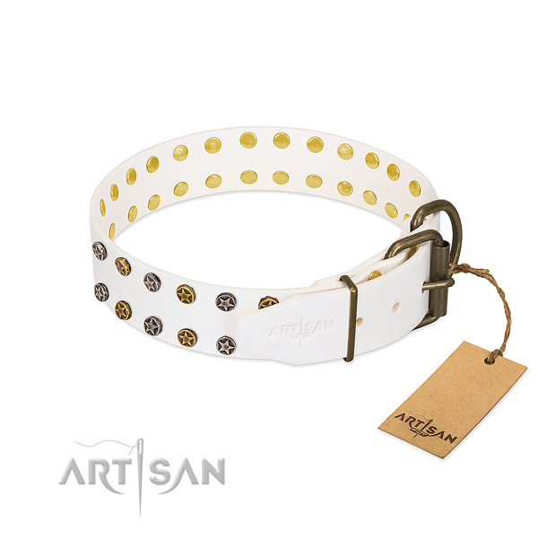 Leather collar with unusual embellishments for your pet