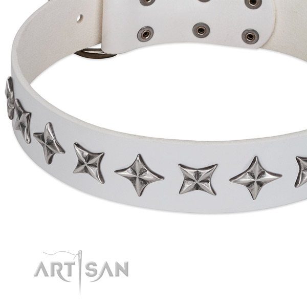 Daily walking embellished dog collar of best quality full grain natural leather