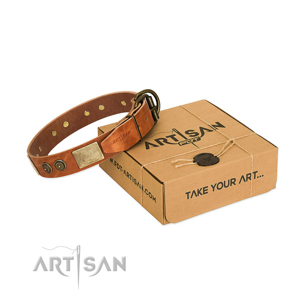 Corrosion proof fittings on full grain natural leather dog collar for walking