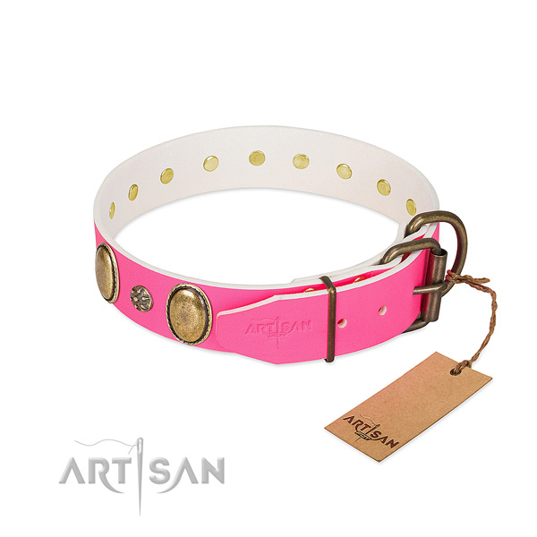 Daily walking high quality leather dog collar with studs