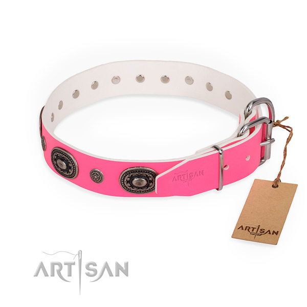 Everyday use easy adjustable dog collar with rust-proof D-ring