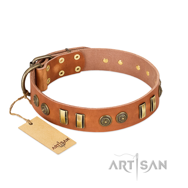 Reliable traditional buckle on leather dog collar for your doggie