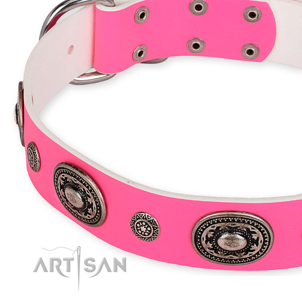 Leather dog collar with stunning reliable studs