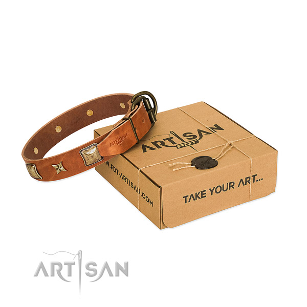 Decorated full grain natural leather collar for your attractive doggie