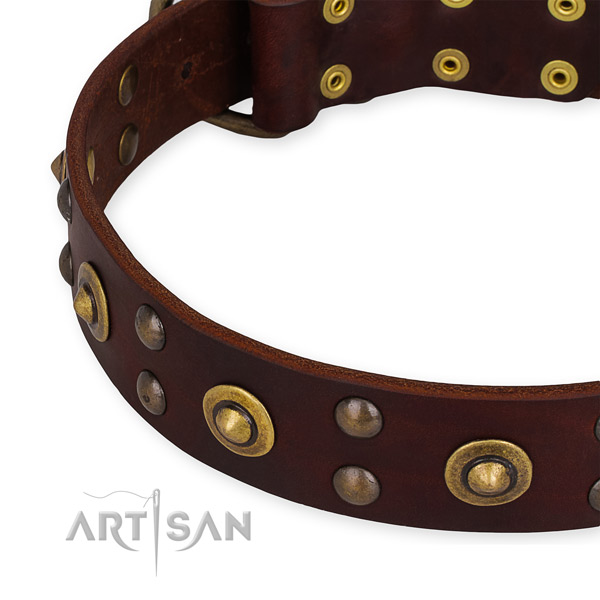 Full grain natural leather collar with corrosion resistant traditional buckle for your attractive four-legged friend