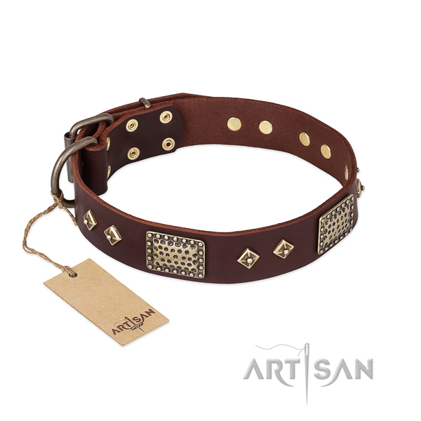 Easy wearing leather dog collar for daily use