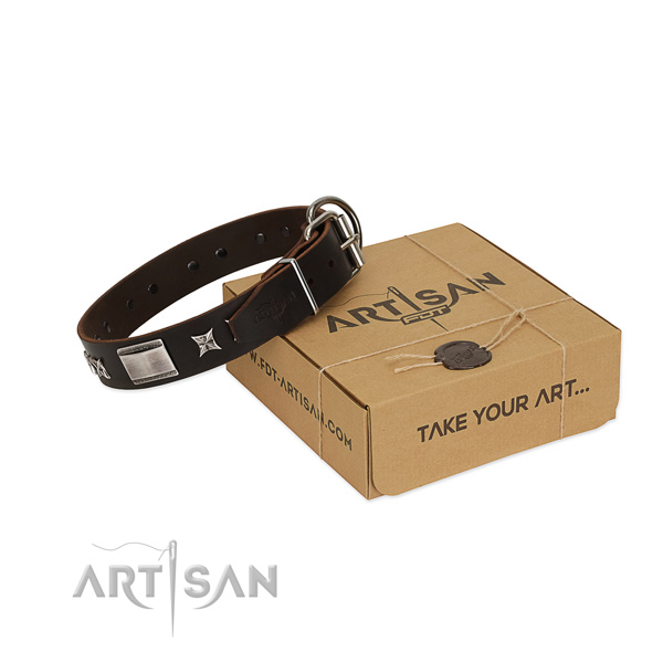 Exquisite collar of full grain natural leather for your lovely four-legged friend