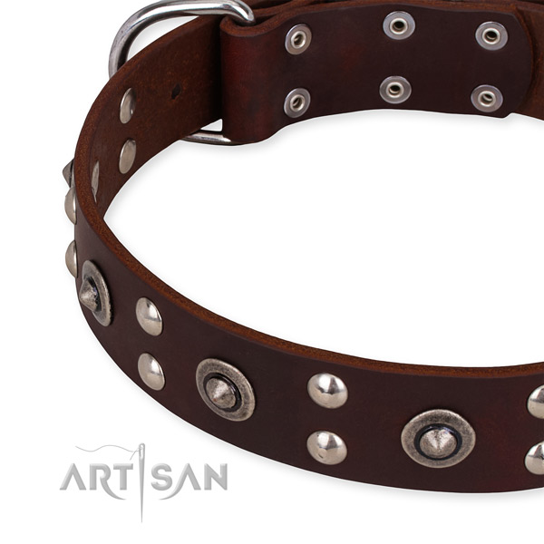 Genuine leather collar with durable hardware for your handsome four-legged friend
