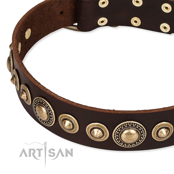 Strong full grain genuine leather dog collar crafted for your lovely four-legged friend