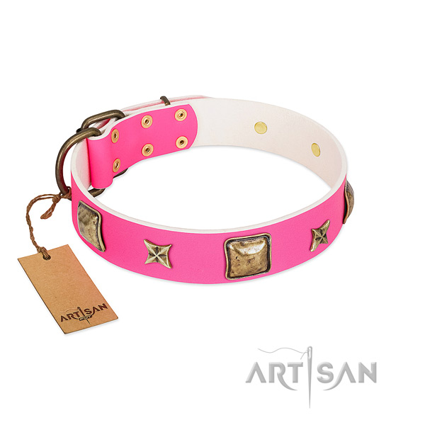 Genuine leather dog collar of reliable material with impressive studs