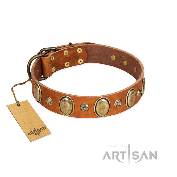 Genuine leather dog collar of top rate material with trendy adornments