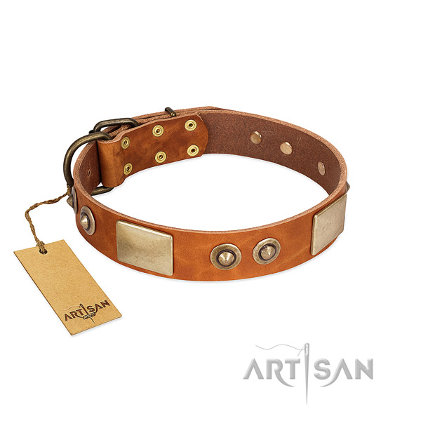 Adjustable leather dog collar for walking your pet