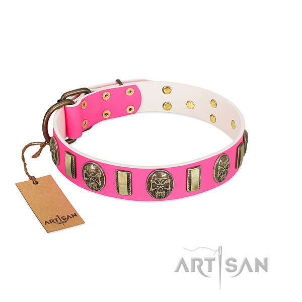 Corrosion resistant embellishments on full grain natural leather dog collar for your four-legged friend
