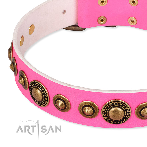 Quality full grain natural leather dog collar handmade for your attractive four-legged friend