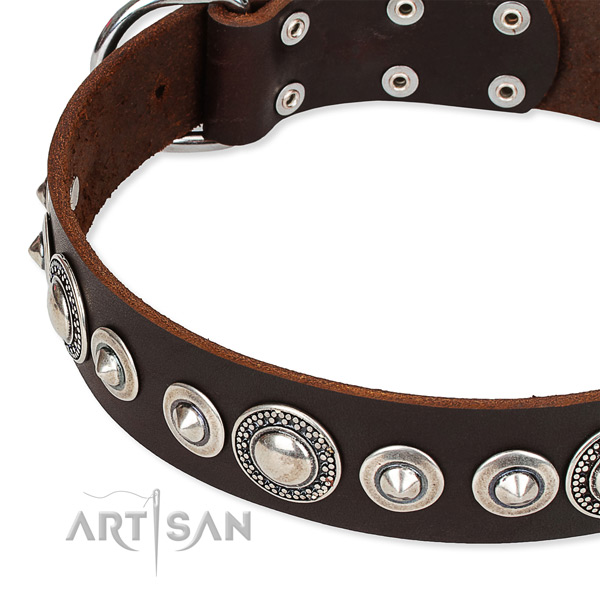 Stylish walking adorned dog collar of reliable full grain leather