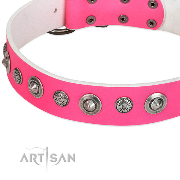Genuine leather collar with rust resistant traditional buckle for your attractive doggie