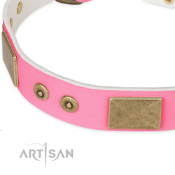 Full grain genuine leather dog collar with adornments for everyday walking