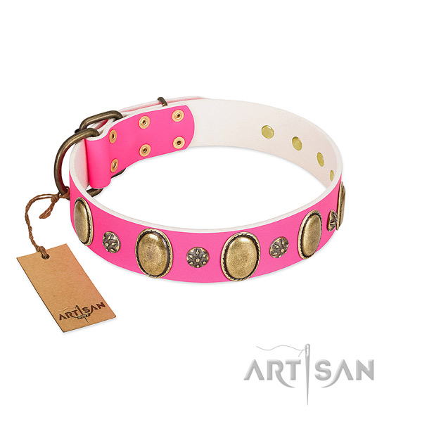 Comfy wearing reliable full grain leather dog collar with adornments