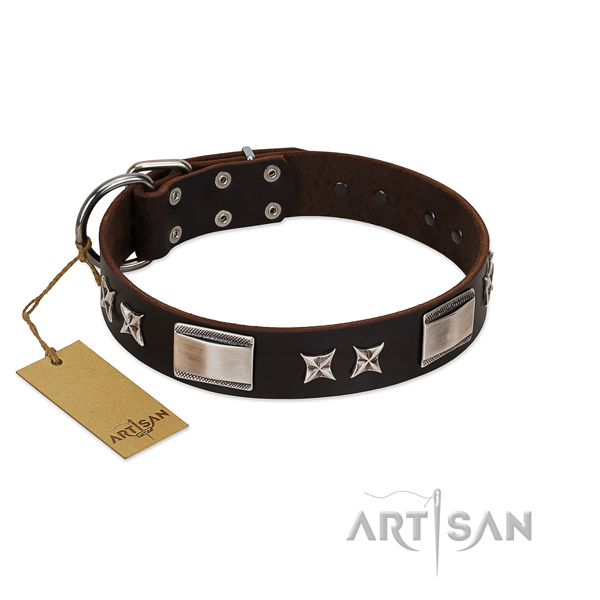 Exceptional dog collar of leather