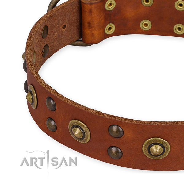 Full grain natural leather collar with corrosion proof hardware for your impressive four-legged friend