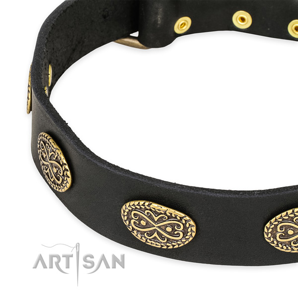 Designer leather collar for your lovely dog