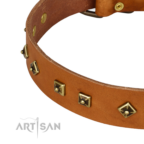 Handmade leather collar for your beautiful doggie