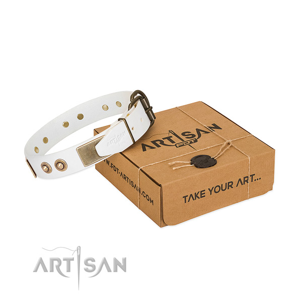 Rust-proof buckle on genuine leather dog collar for your canine