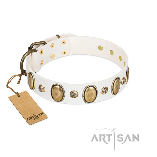 Genuine leather dog collar of gentle to touch material with trendy decorations