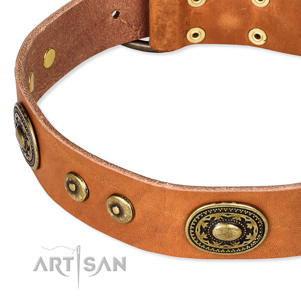 Leather dog collar made of soft material with studs