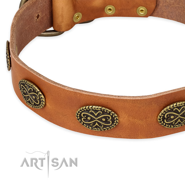 Extraordinary leather collar for your impressive dog
