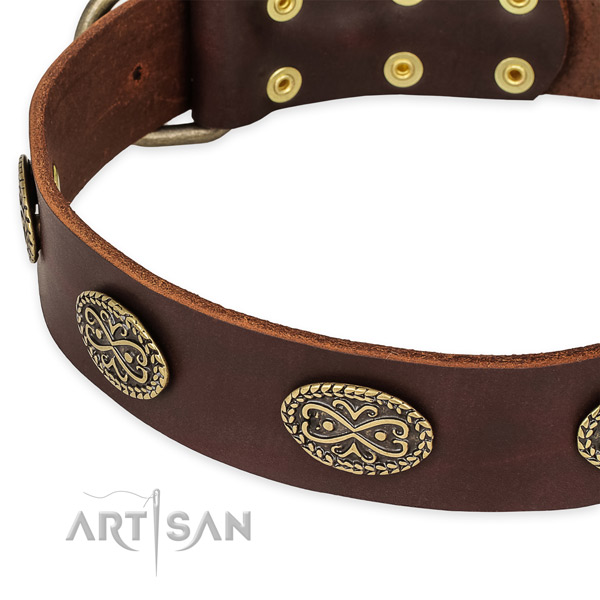 Best quality genuine leather collar for your stylish four-legged friend