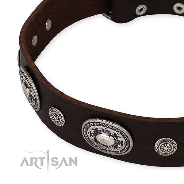 Top rate full grain natural leather dog collar crafted for your impressive doggie