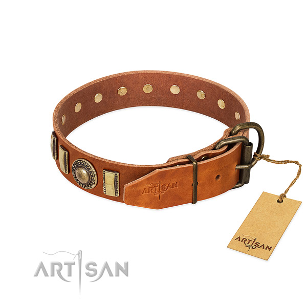 Perfect fit leather dog collar with rust resistant D-ring