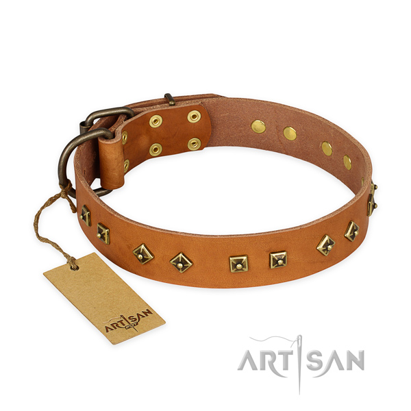 Perfect fit full grain natural leather dog collar with corrosion proof fittings