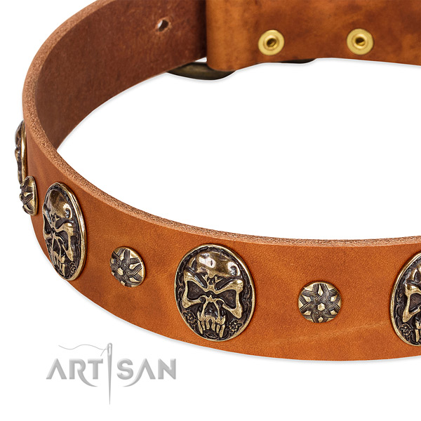 Rust-proof adornments on natural genuine leather dog collar for your canine