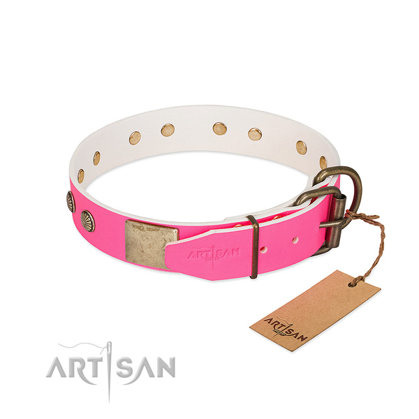 Strong studs on comfy wearing dog collar