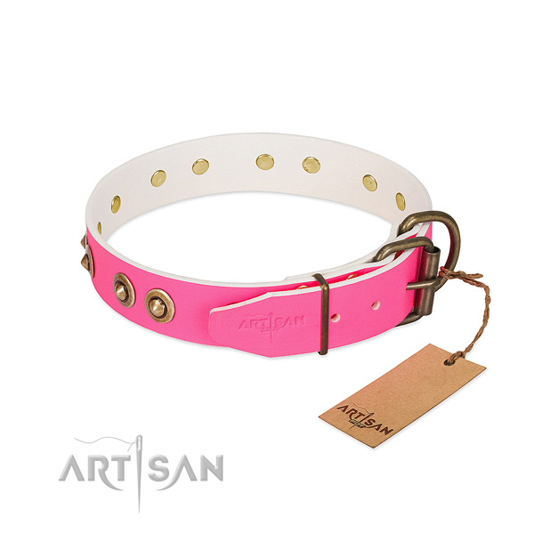 Full grain genuine leather dog collar with durable traditional buckle and embellishments