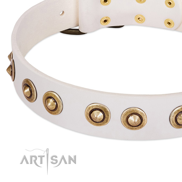 Corrosion resistant studs on full grain genuine leather dog collar for your doggie