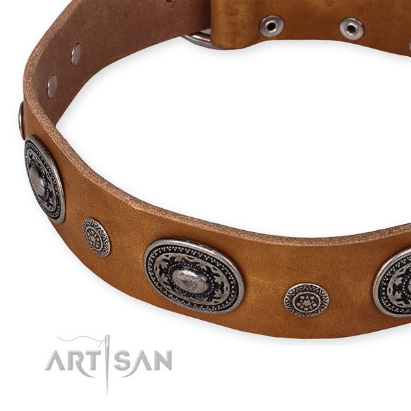 Top rate full grain leather dog collar handcrafted for your lovely dog