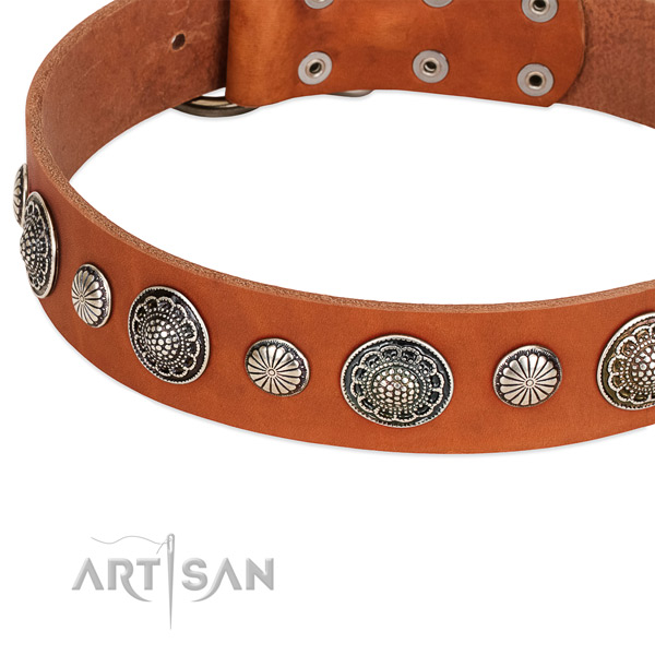 Full grain genuine leather collar with corrosion proof buckle for your stylish pet