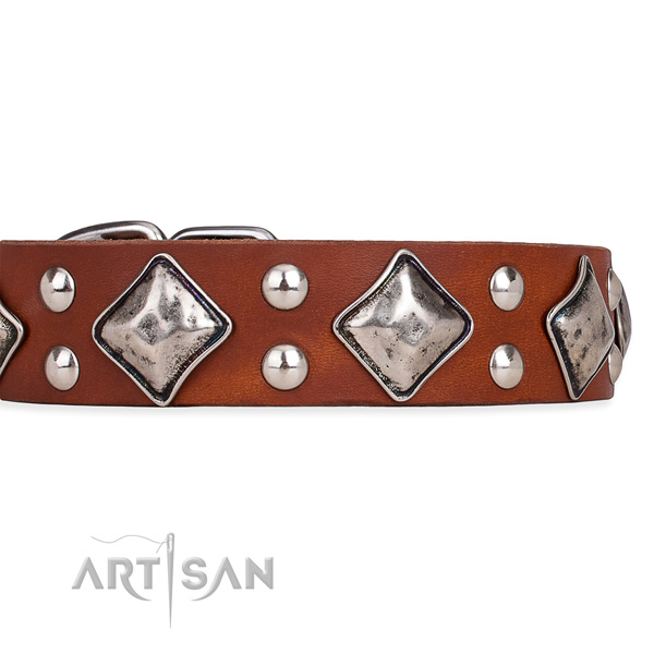 Leather dog collar with top notch durable adornments