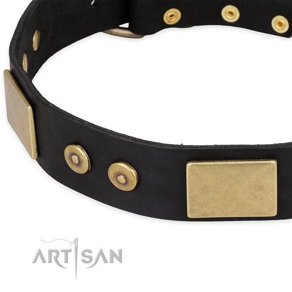 Strong studs on leather dog collar for your doggie