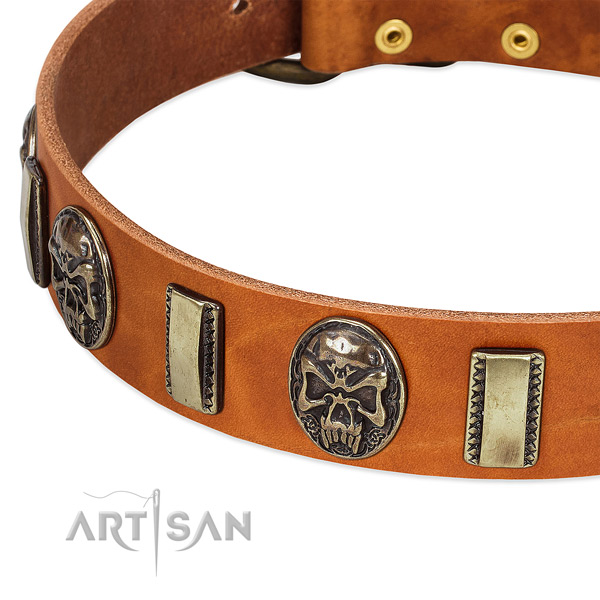 Reliable adornments on genuine leather dog collar for your pet