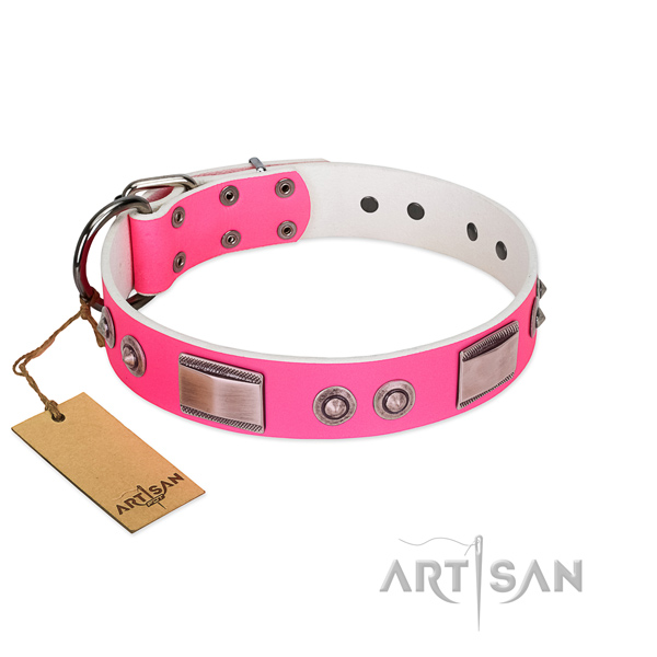 Remarkable leather collar with decorations for your canine