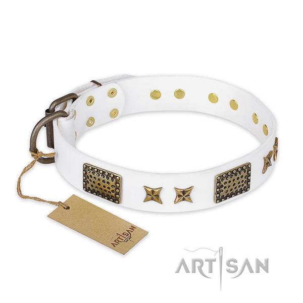 Top quality leather dog collar with strong hardware